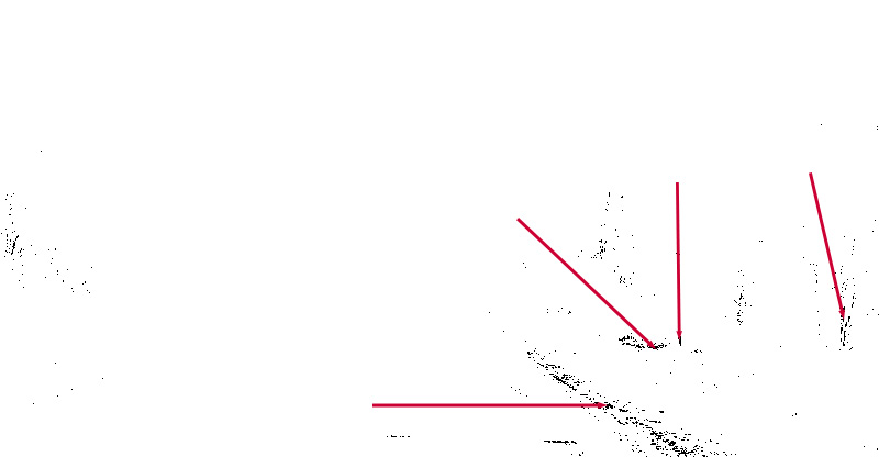 Фото 30. Поиск точки черного на изображении при помощи корректирующего слоя Threshold (Изогелия). Как выставить баланс белого на снимке в Photoshop. Урок по теории цвета для фотографов.