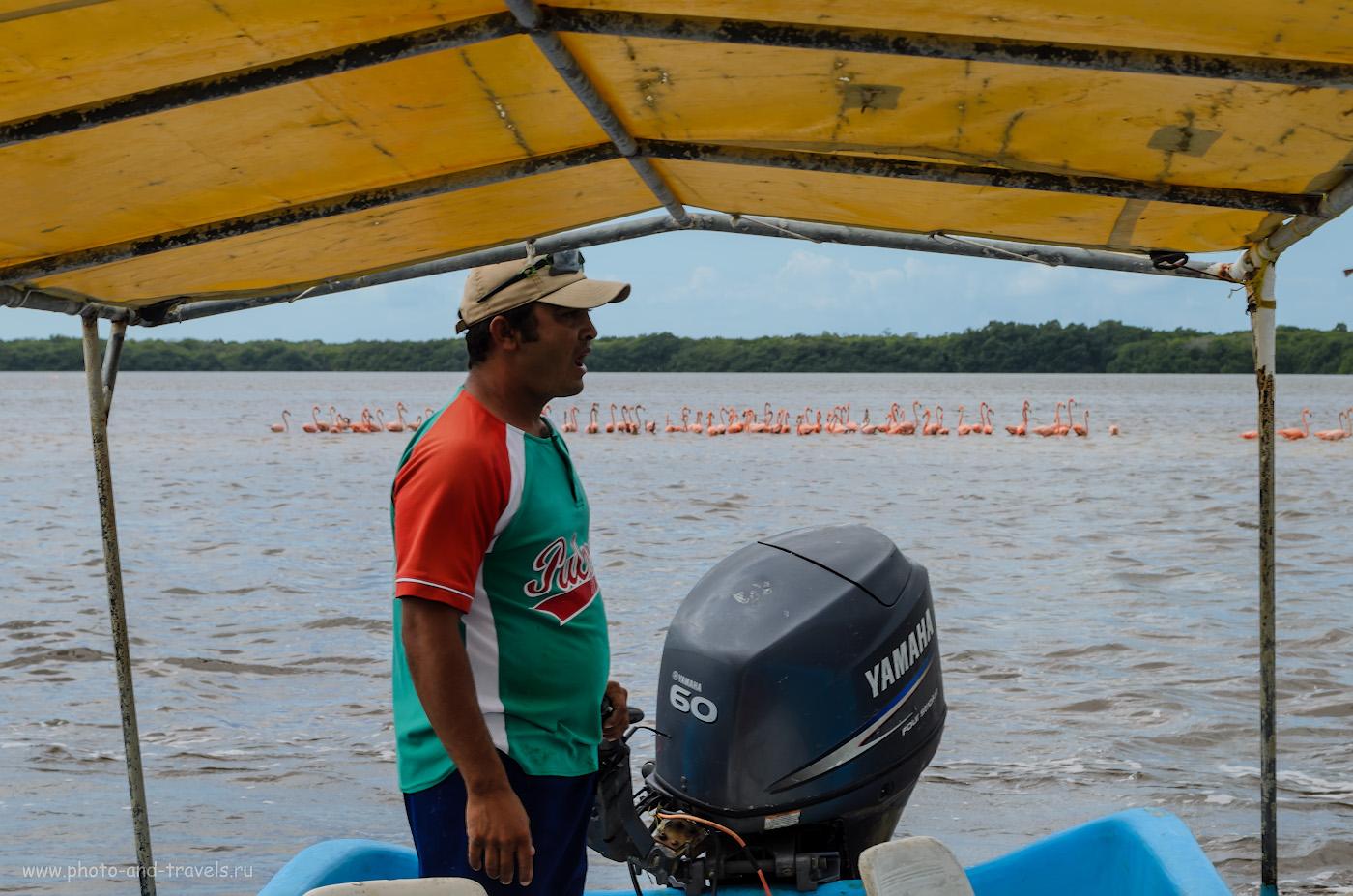 7. Поселок Селестун. Национальный парк в Мексике. Приплыли полюбоваться табунами фламинго. На снимке - наш водитель моторки и гид. 1/125, 11.0, 100, 25.