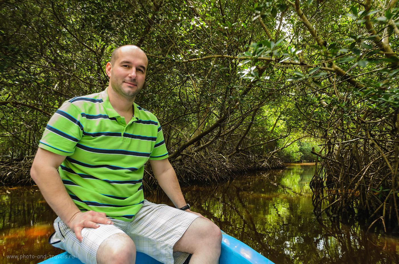 Фотография 13. В мангровом лесу в национальном парке Селестун (Celestun) в обычное время лежат на корнях кустов крокодилы... Мы, к сожалению, их не увидели. Самостоятельная экскурсия. Отзывы о поездке в Мексику в ноябре.