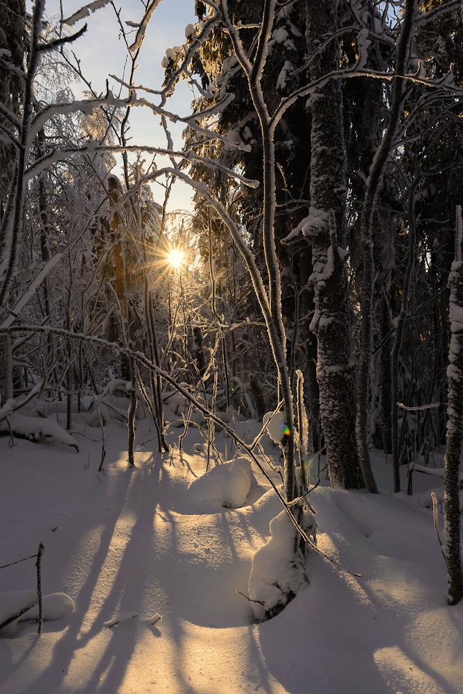 Фотография 9. Один прекрасный день на склоне горы Колпаки. Как мы путешествовали по Пермскому краю на автомобиле зимой. 1/50, +0.33, 16.0, 250, 24.