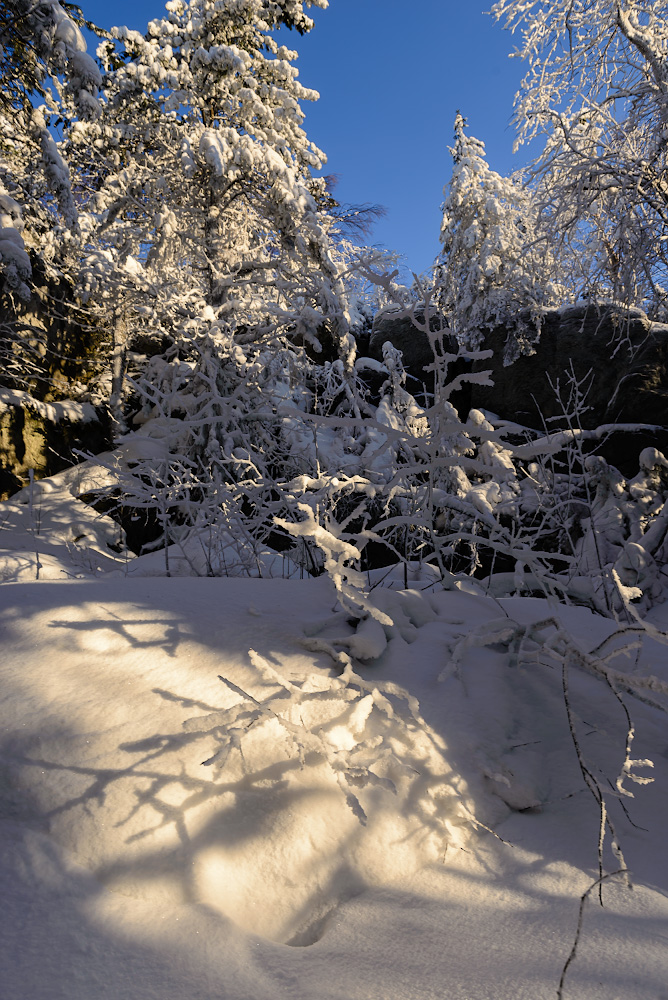 Снимок 17. Зимний лес у скал на горе Колпаки. Отчет о поездках выходного дня по Пермскому краю. 1/80, 8.0, 100, 24.