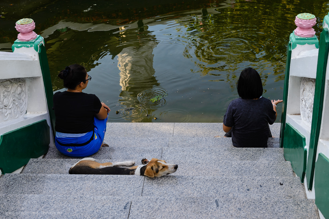 Фото 12. Тихий вечер в Паттайе. Обстановка в парке Wang Sam Sien умиротворяющая и расслабляющая. Рассказ про вечер, двух женщин, их собаку и трех любопытных черепах. Экскурсия к Большому Будде на холме Пратамнак (Pratumnak Hill). 1/100, 8.0, 220, 50.