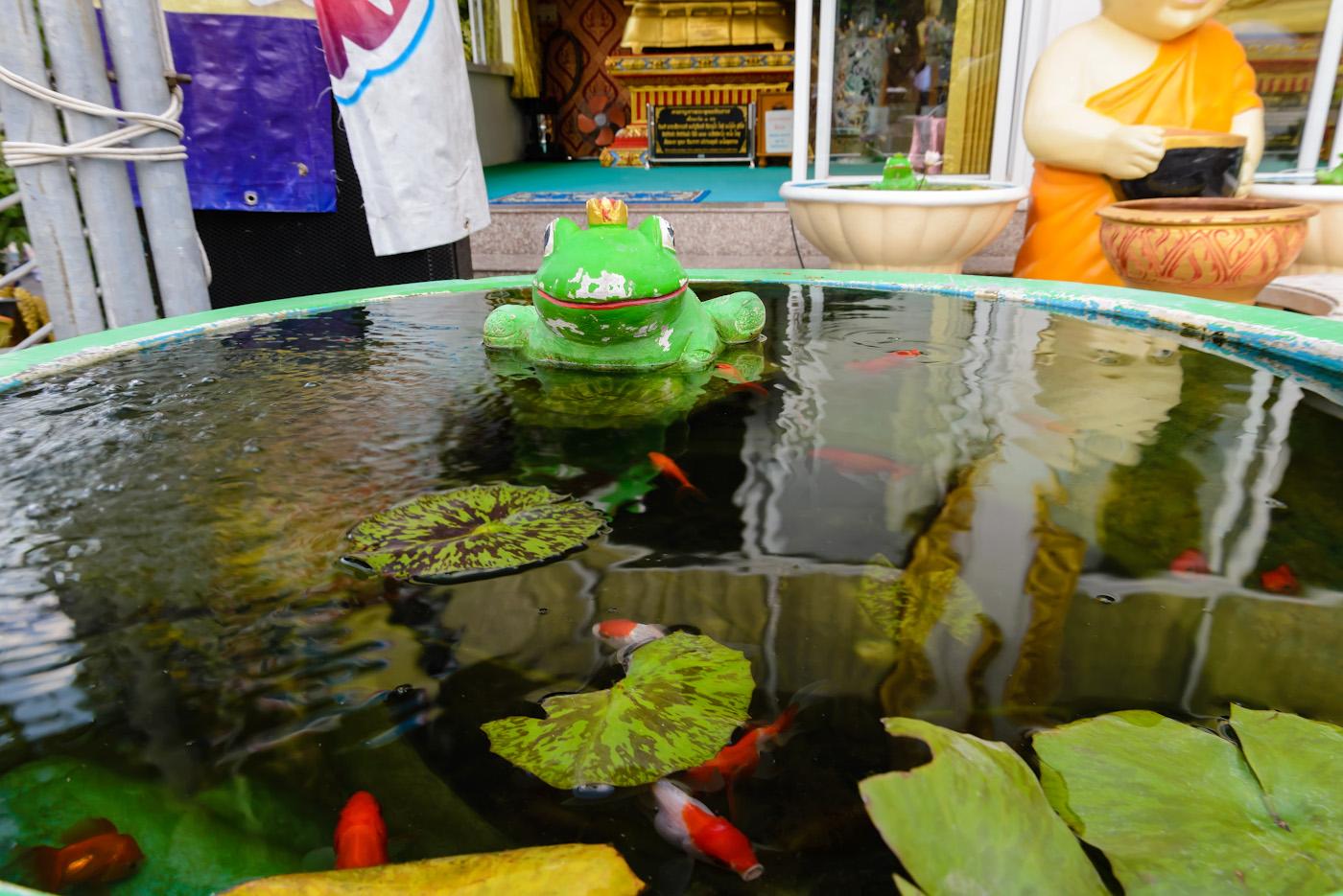 Фотография 27. Лягушка царевна у ног Биг Будды в Паттайе. Отзывы о поездке в Таиланд в четвертый раз. 1/50, 10.0, 1000, 24.