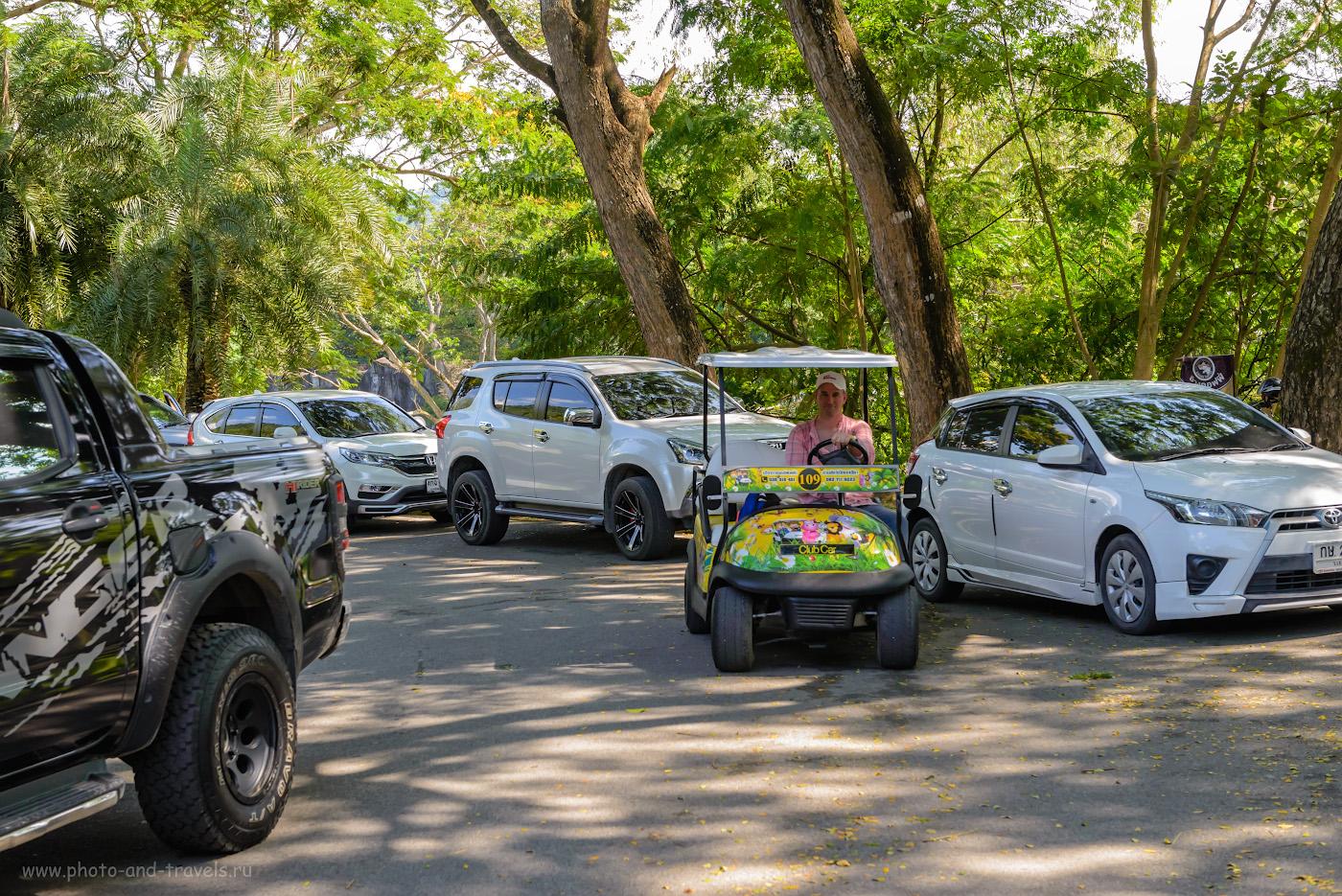 Фото 5. Самый удобный способ перемещаться по территории открытого зоопарка «Кхао Кхео» - взять в аренду электрическую машинку. 1/500, +0.67, 6.3, 1600, 50.