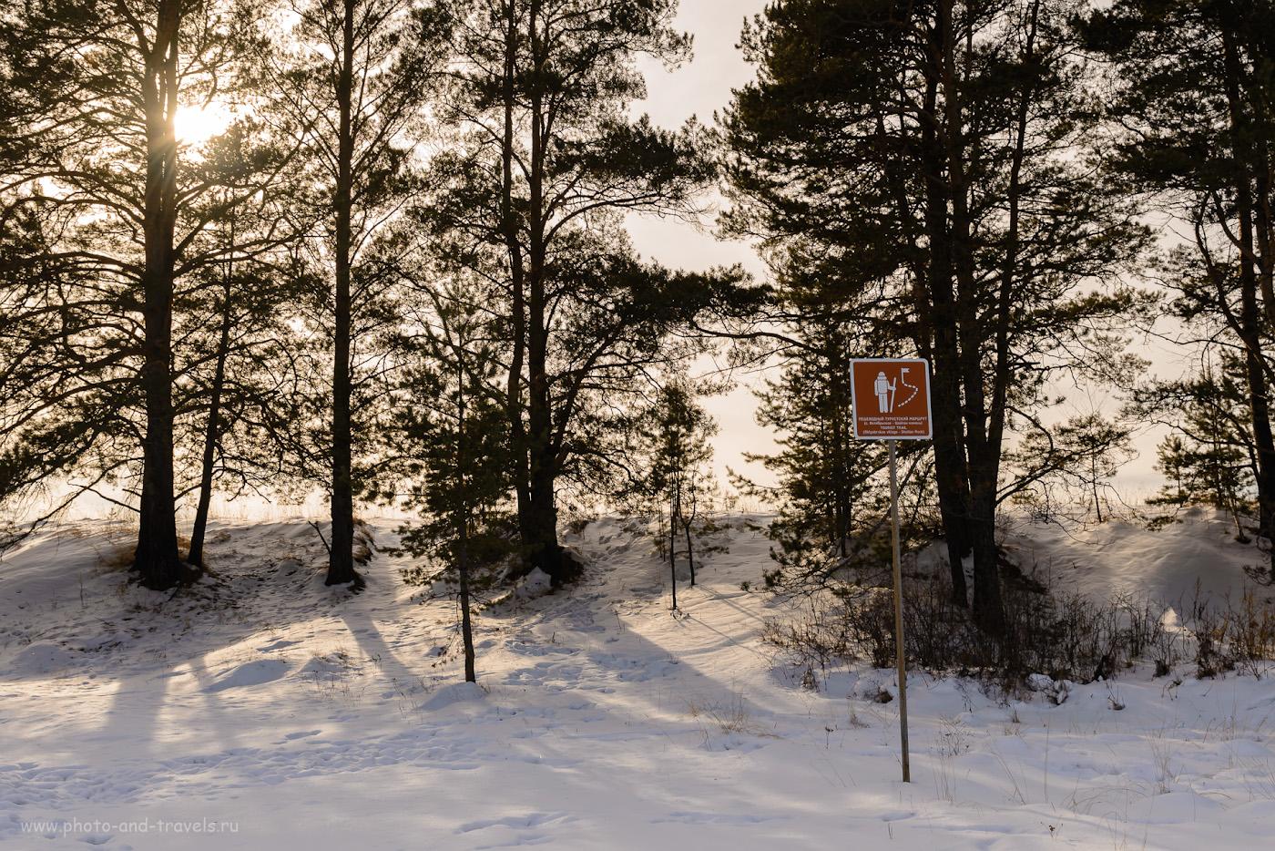 Фотография 2. Начало тропы к Шайтан-камню начинается после речки Воронина. Отзыв о ПВД в окрестностях Екатеринбурга. 1/125, 8.0, 100, 27.