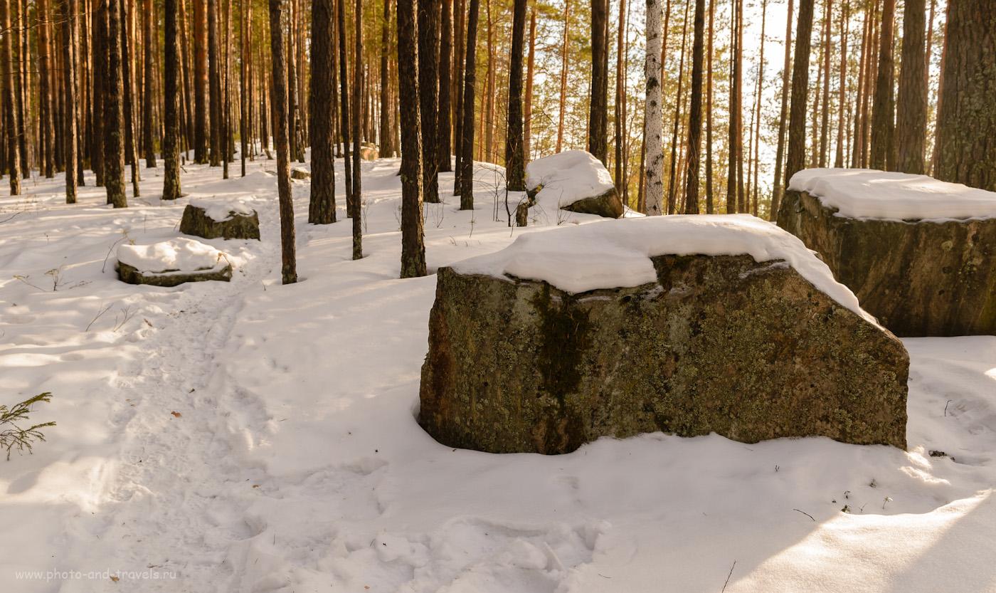 Фотография 10. Куда пойти в поход на один день недалеко от Екатеринбурга? На скалу Шайтан-камень. 1/60, 6.3, 200, 29.