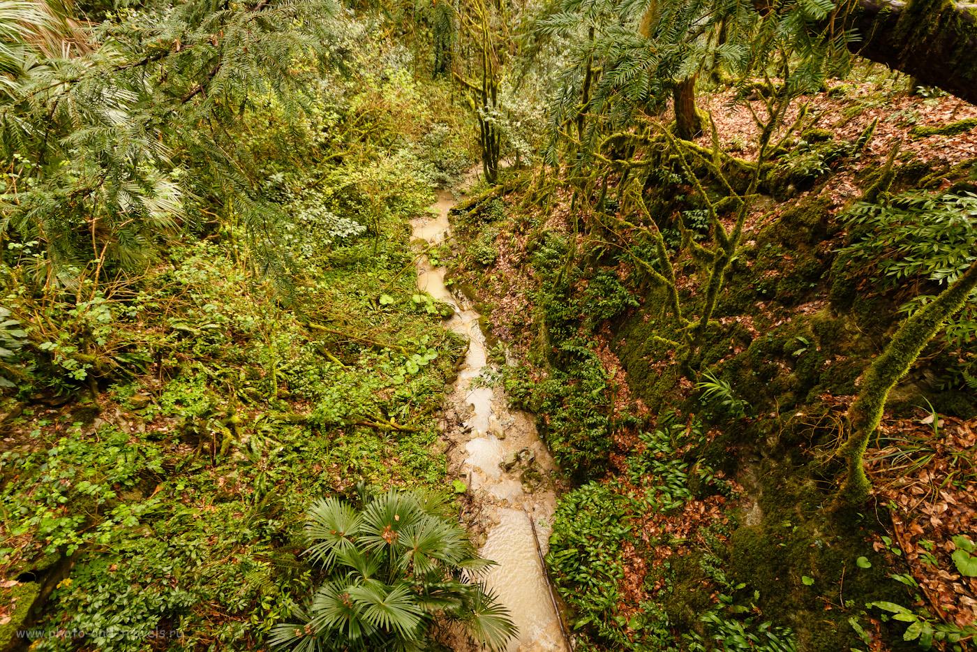Фото 27. Виды на Малом маршруте Тисо-самшитовой рощи. Отзывы туристов об интересных экскурсиях. 1/80, f/5.6, ISO 400, 10мм.