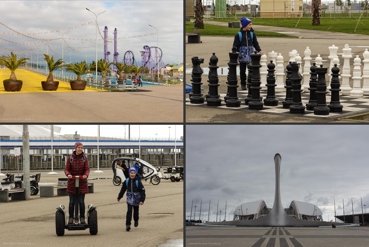 37. Отдых в Сочи. Достопримечательности с фотографиями и описанием. Прогулка в Олимпийском парке в марте.