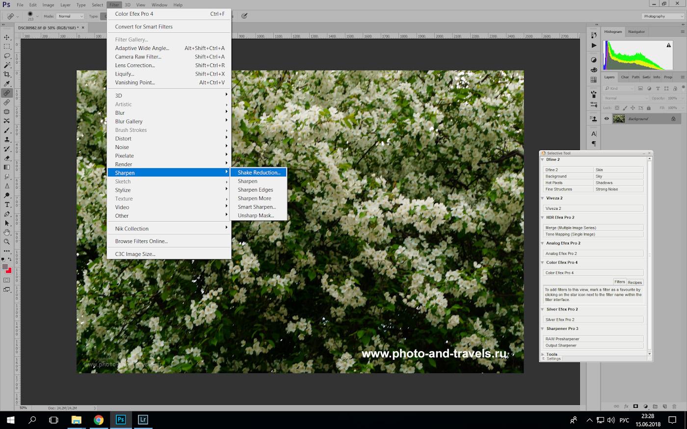 Фотография 3. Как исправить нерезкие снимки в Photoshop. Примеры съемки на Sony A6000 KIT 16-50mm f/3.5-5.6.