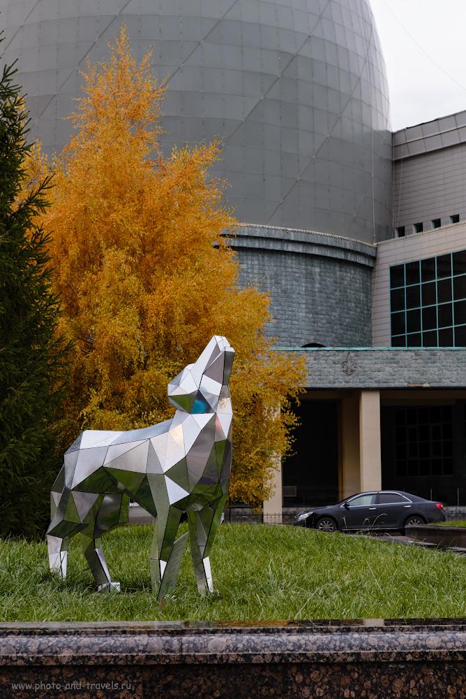 Фото 14. Собака (или волк) на фоне «яйца» госархива Казахстана. Интересные места в Астане, которые можно посмотреть за полдня. 8.0, 9.0, 100, 70.