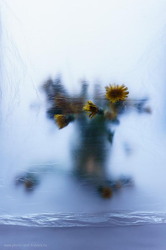 Фото 38. Как я фотографировал натюрморт на беззеркалку Sony А6000 КИТ 16-50mm f/3.5-5.6. Настройки: 1/5, 5.6 ,100, 37.