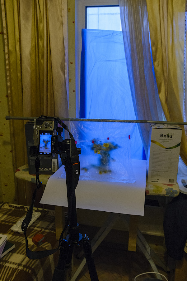 Фото 37. Как я фотографировал натюрморт через полиэтилен на камеру Sony А6000 16-50mm f/ 3.5- 5.6.