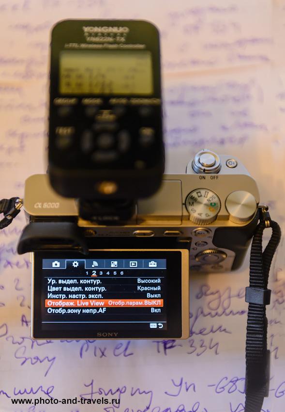 Фото 4. Почему при съемке со вспышкой на Sony Alpha 6000 (ILCE 6000) черный экран или видоискатель? Потому, что вы не выключили режим «Отображения влияния параметров съемки, показываемого на дисплее или в ЭВИ. 1/160, -0.67, 2.8, 1600, 70.