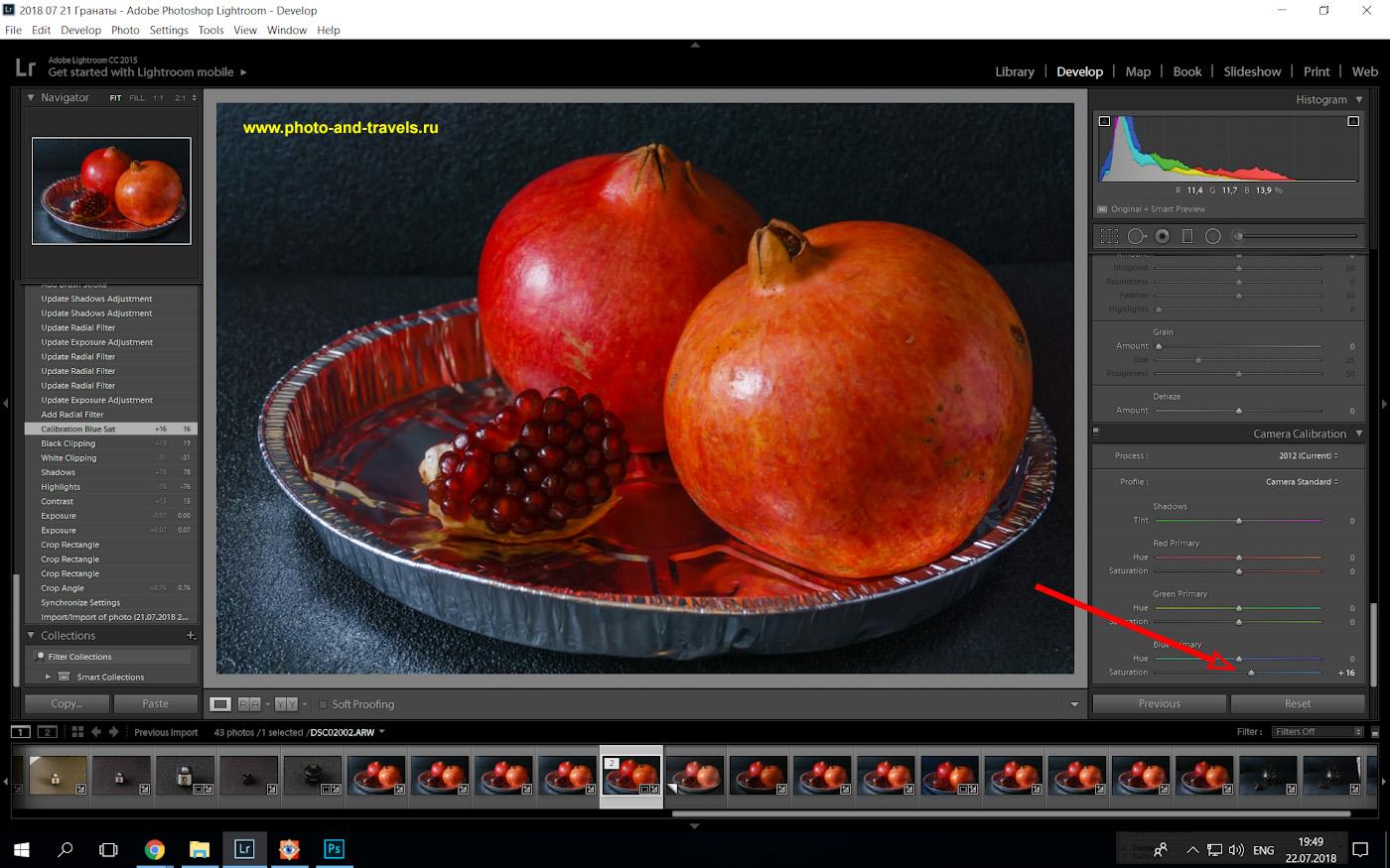 Фото 19. Тонирование фона в нашем натюрморте в холодный цвет путем добавления насыщенности синего в разделе «Camera calibration» программы «Lightroom». Учимся обрабатывать снимки с Sony A6000.