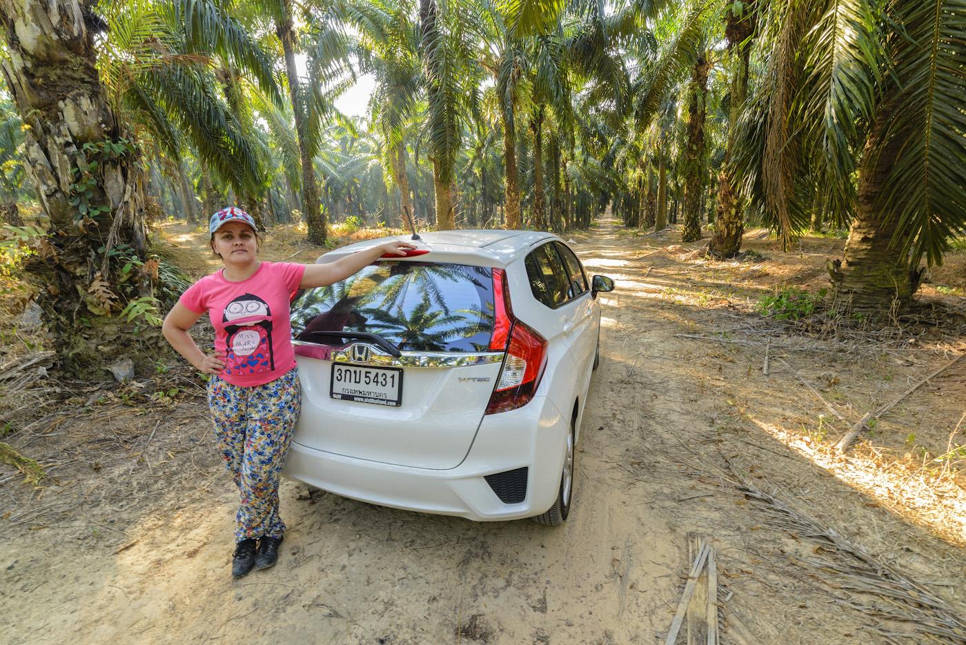 18. На арендованном автомобиле «Honda» мы проехали 2500 км по дорогам Таиланда. Как организовать интересное и недорогое путешествие? Взять в аренду авто.