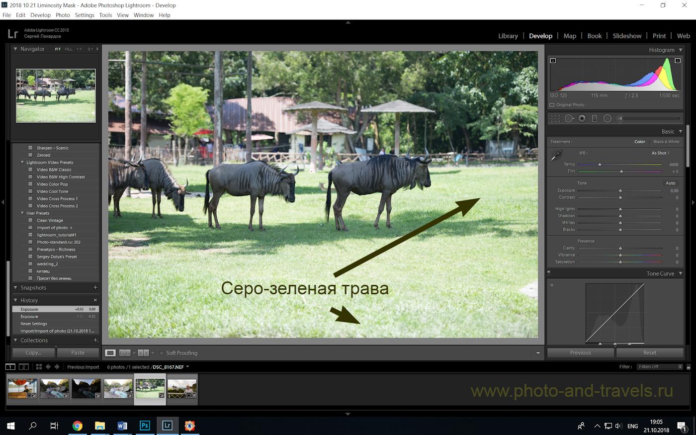 Фото 21. Необработанный RAW с камеры Nikon D610. Съемка велась телеобъективом Nikon 70-200mm f/2.8G. Настройки: 1/500, +0.67, f/2.8, ISO 125, ФР=116 мм.