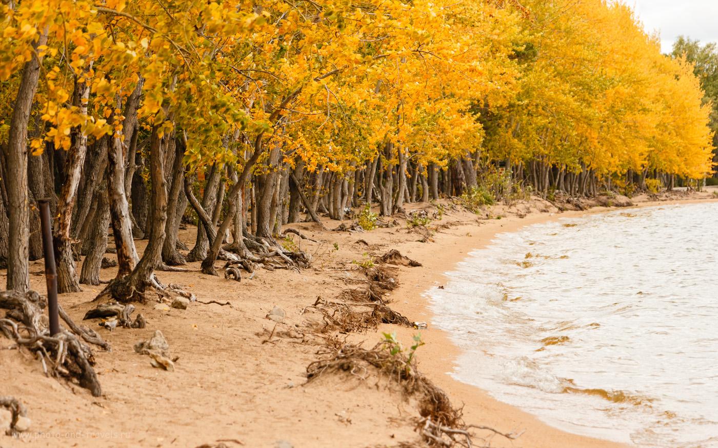Фотография 37. Центральный пляж в Бурабае осенью. Отзыв о поездке на отдых в Казахстан из России. 1/400, +0.3, 5.6, 400, 104.
