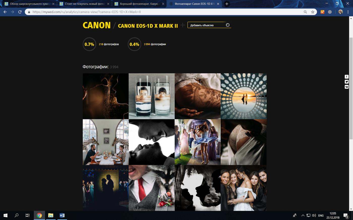 Фото 38. Примеры использования полнокадровой профессиональной камеры Canon EOS 1D X Mark II для свадебной съемки. Выбираем, какой фотоаппарата купить.