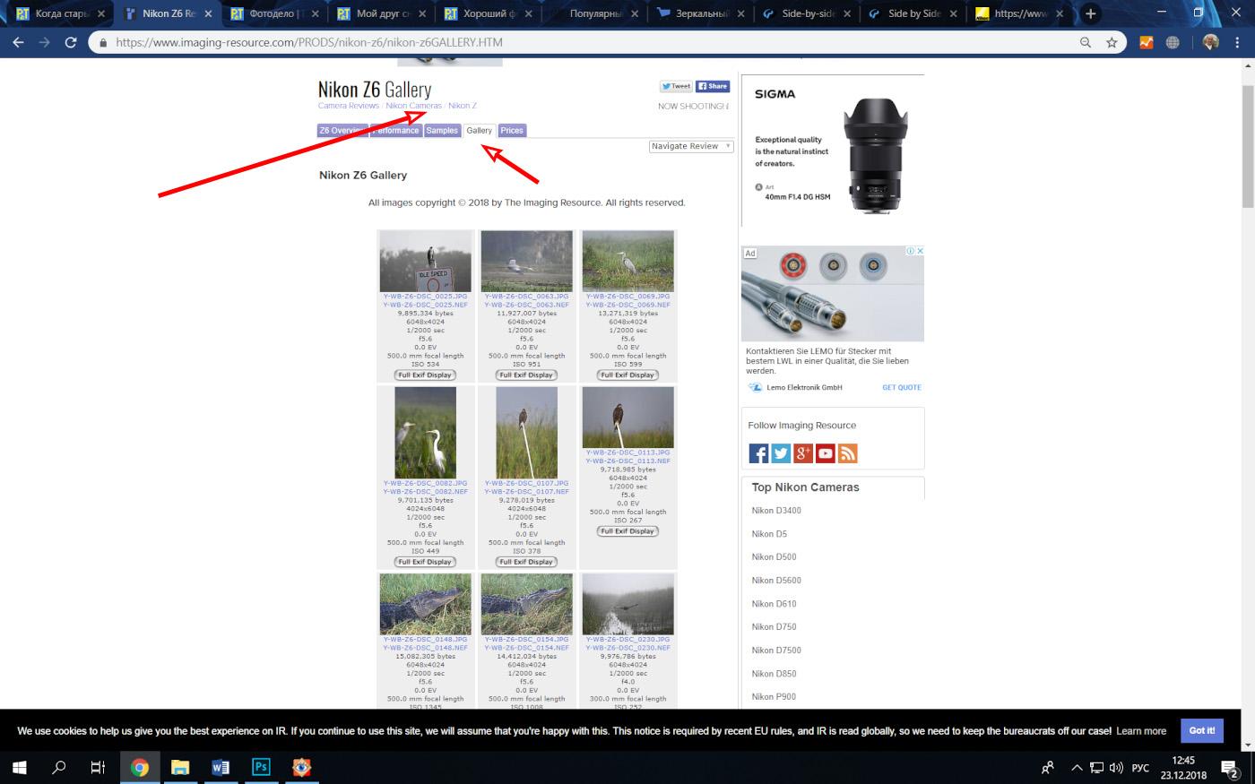 Фото 46. Где можно скачать RAW с камеры Nikon Z6, Nikon Z7, Nikon D750, D810, D850 и D5? На сайте Imaging Resource есть NEF, снятые в различных ситуациях.