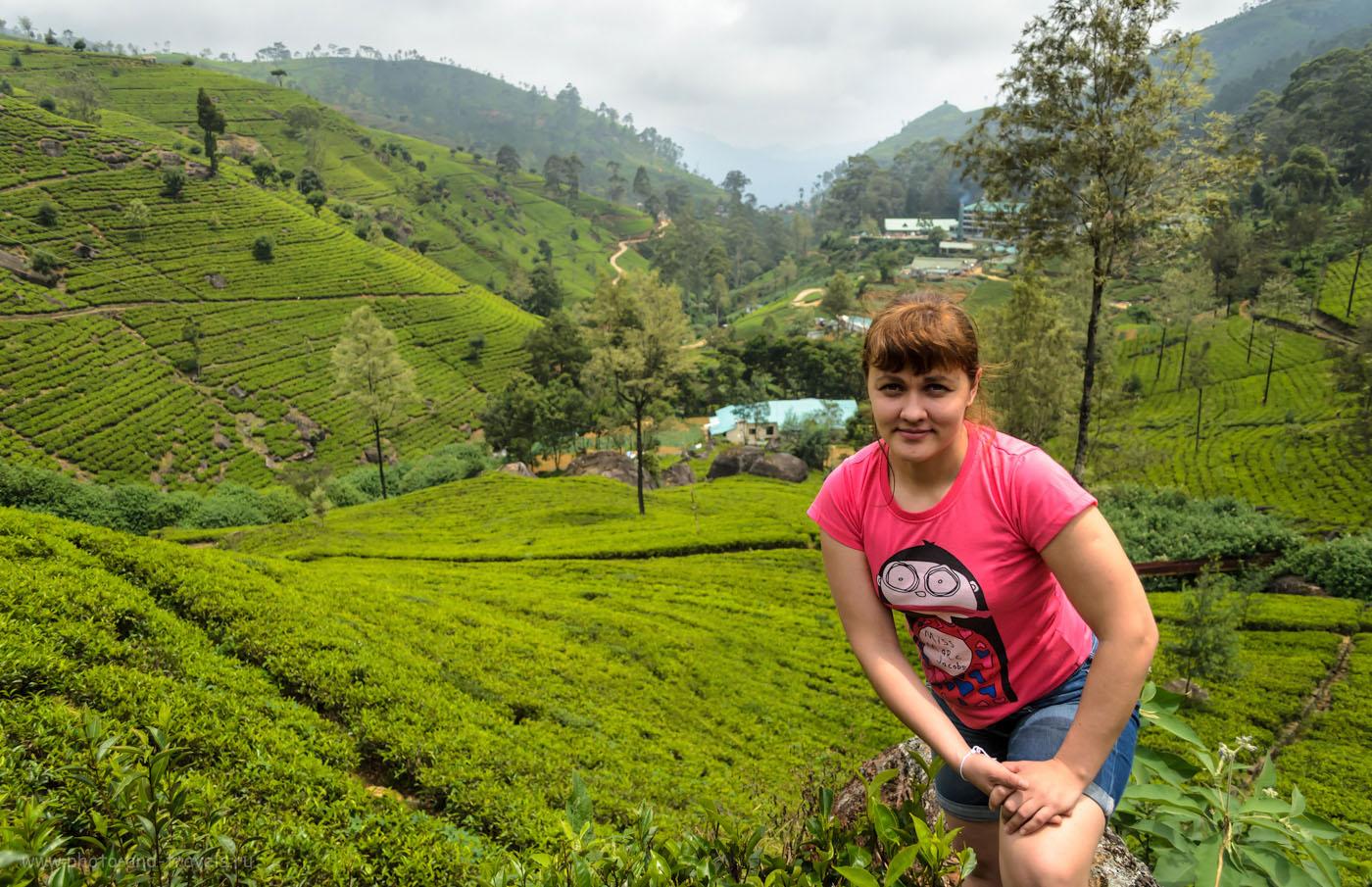 Фотография 6. На заднем плане - фабрика Маквудс и ее чайный центр Mackwoods Labookellie Tea Centre. Если будете добираться их Канди или из Нувара Элия, не пропустите - стоит у дороги А4. Отчет о самостоятельном отдыхе в Шри-Ланке.