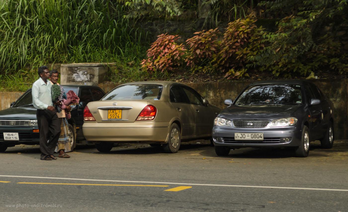 Фото 15. Аренда машины и вождение на Шри-Ланке имеют ряд особенностей, описанных в первой главе. Наш автомобиль - с госномером KL 5924. Стоянка у входа в королевский ботанический сад Перадения.