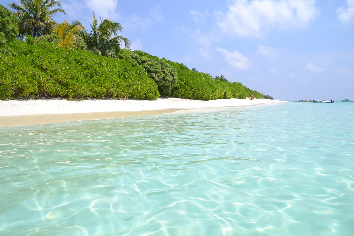 Фото 1. Пляж на острове Тодду (Thoddoo Island). В это райское место можно попасть, сделав пересадку в Астане и в Дели. Отчеты туристов о самостоятельном путешествии на Мальдивы. Настройки: В=1/400, f/10.0, ISO 100, ФР=55 мм.
