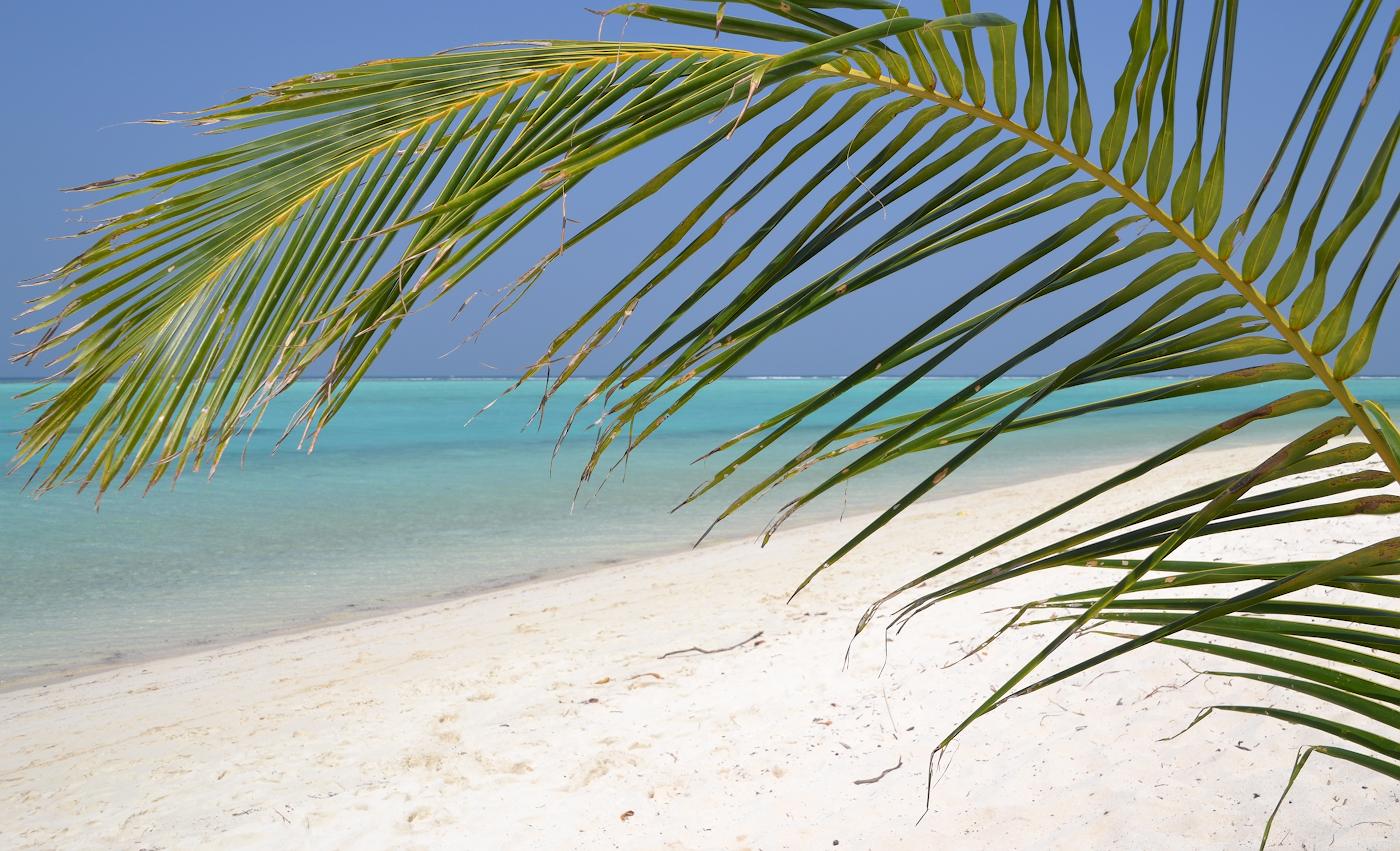 Фотография 2. Идеальные Мальдивы. Рассказ о перелете через Астану. 1/500, 11.0, 100, 55.