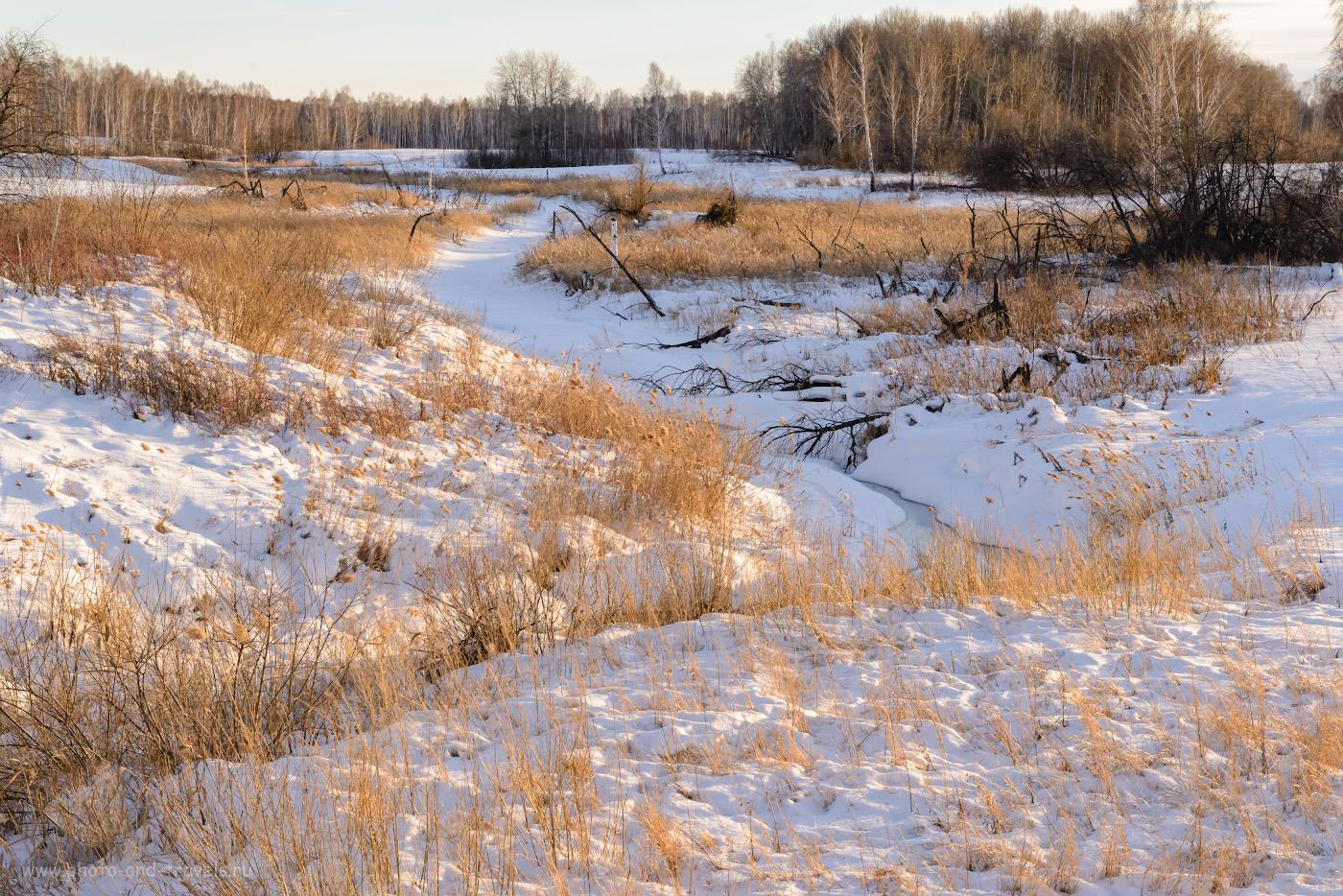 Фото 37. Вид на реку Межовка вечером. Где-то там, за дальней берёзовой рощей с косулями, спит подо льдом, до поры до времени, Ольгинский водопад. 1/160, +0.33, 13.0, 1100, 66.