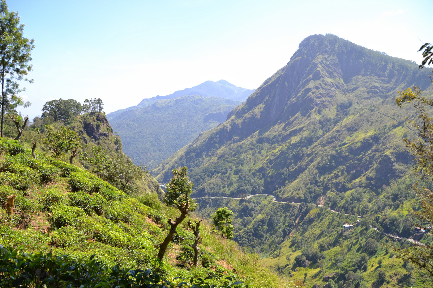 Фото 22. Захватывающие виды на Малом Пике Адама (Little Adam's Peak). Отчет о поездке на машине с водителем по Шри-Ланке с пляжа Унаватуна. 1/250, 8.0, 100, 55.