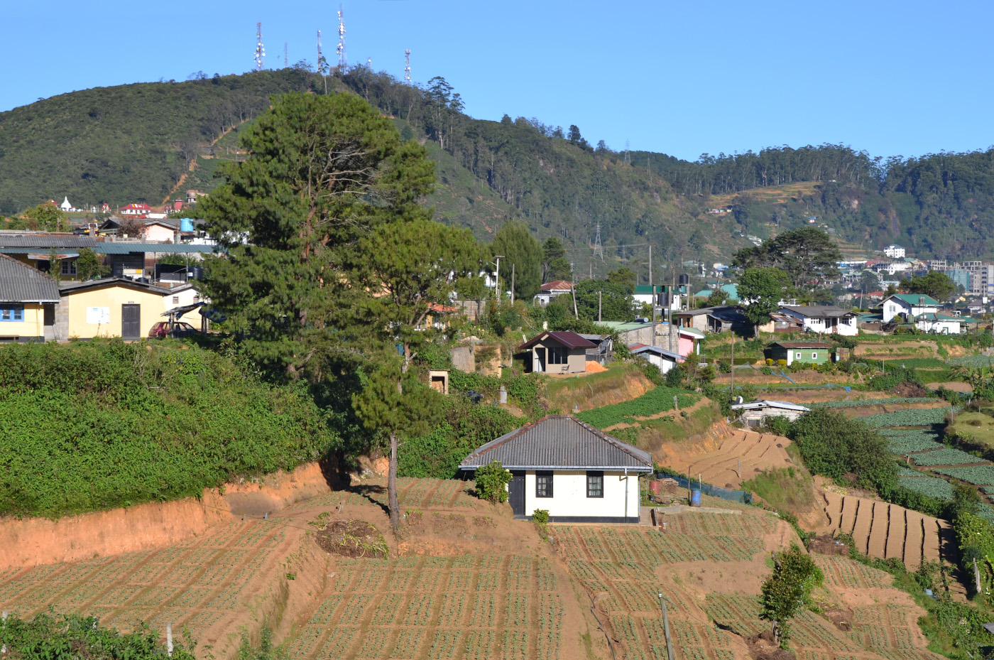 Фотография 23. Так выглядит столица чайного региона Шри-Ланки город Нувара-Элия. Как мы добрались сюда на машине с водителем из Унаватуны. 1/250, 8, 100, 55.