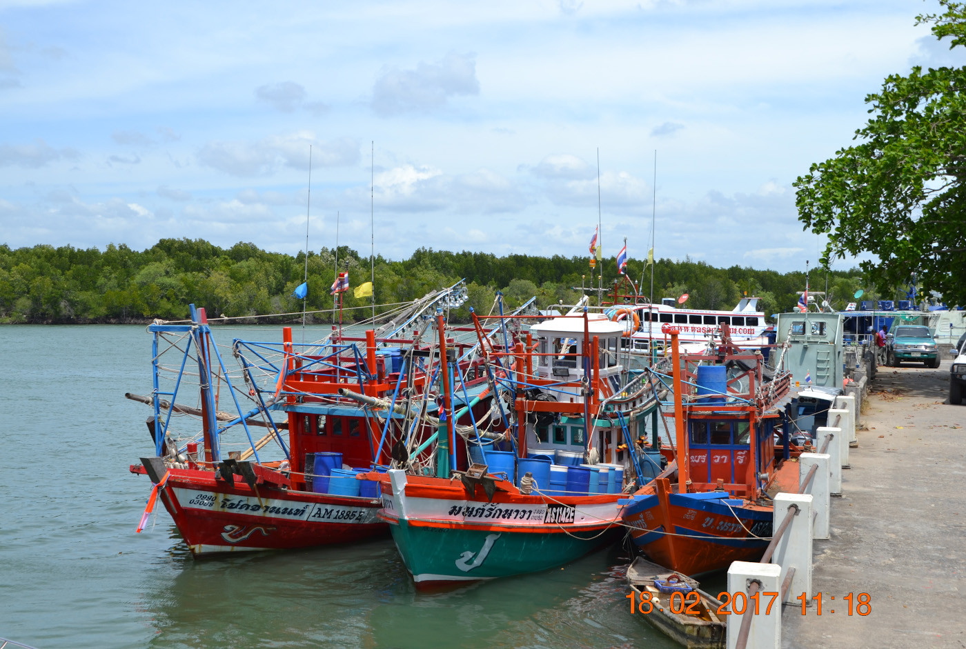 Фото 28. Лодки на пирсе Пакбара (Pak Bara Pier), с которого можно добраться до острова Ко Липе самостоятельно. 1/320, 9.0, 100, 55.