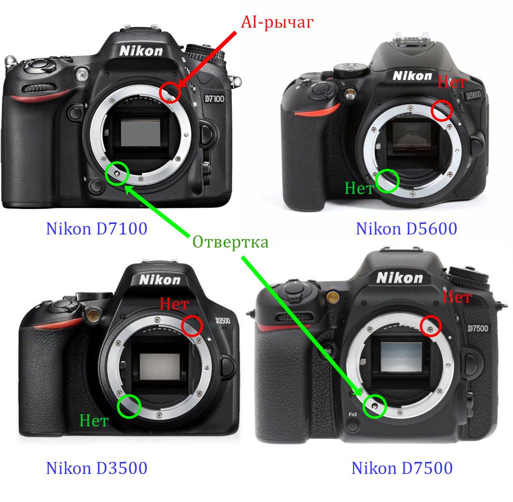 Фото 8. Рычаг AI в камере Nikon D7100 находится сверху вверху. Привод для фокусировки линзы под «отвертку» - слева внизу. На камере Nikon D3500, Nikon D5600 нет ни AI рычага, ни отвертки (на Nikon D7500 привод АФ имеется).