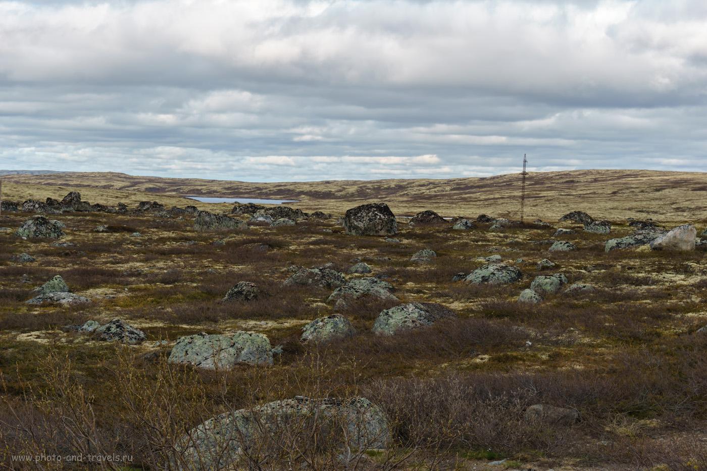 Фотография 6. Каменистая тундра Кольского полуострова. Ни каких животных во время своего путешествия я не увидел.