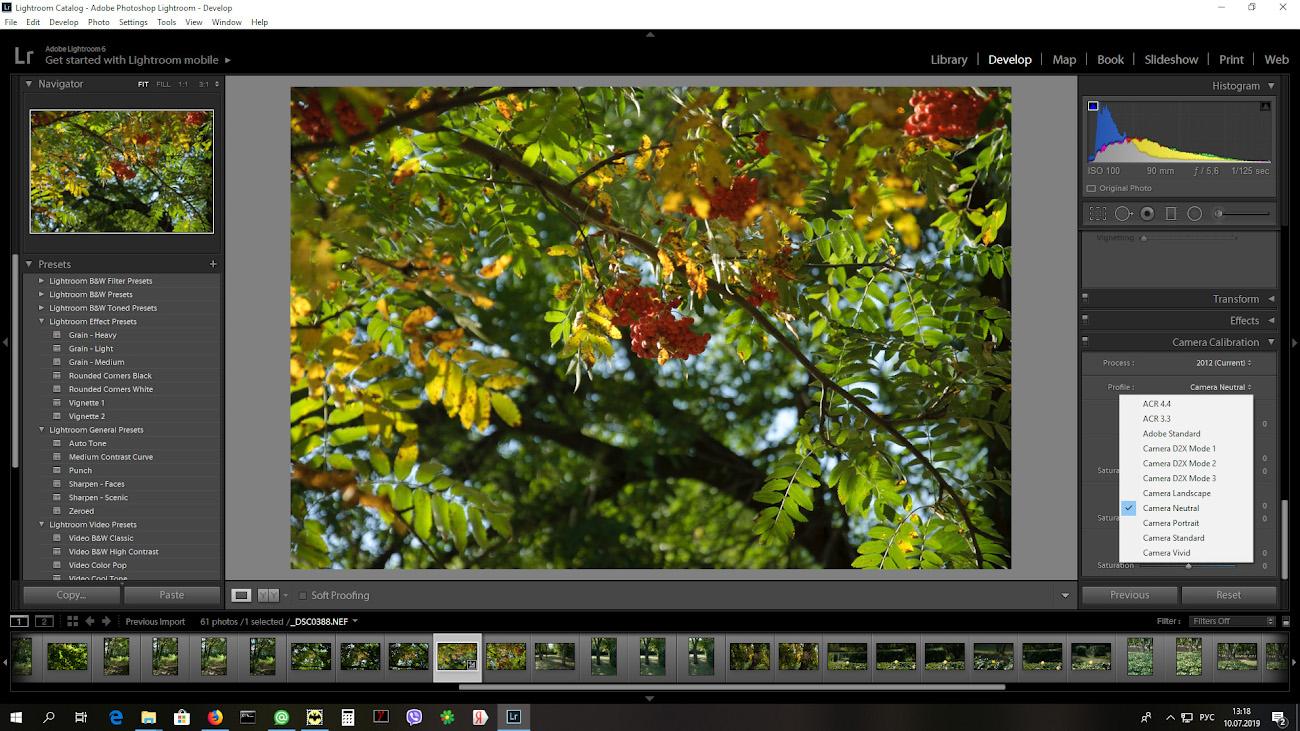 Какой профиль камеры выставить в Lightroom при обработке снимков с CCD-матрицы.