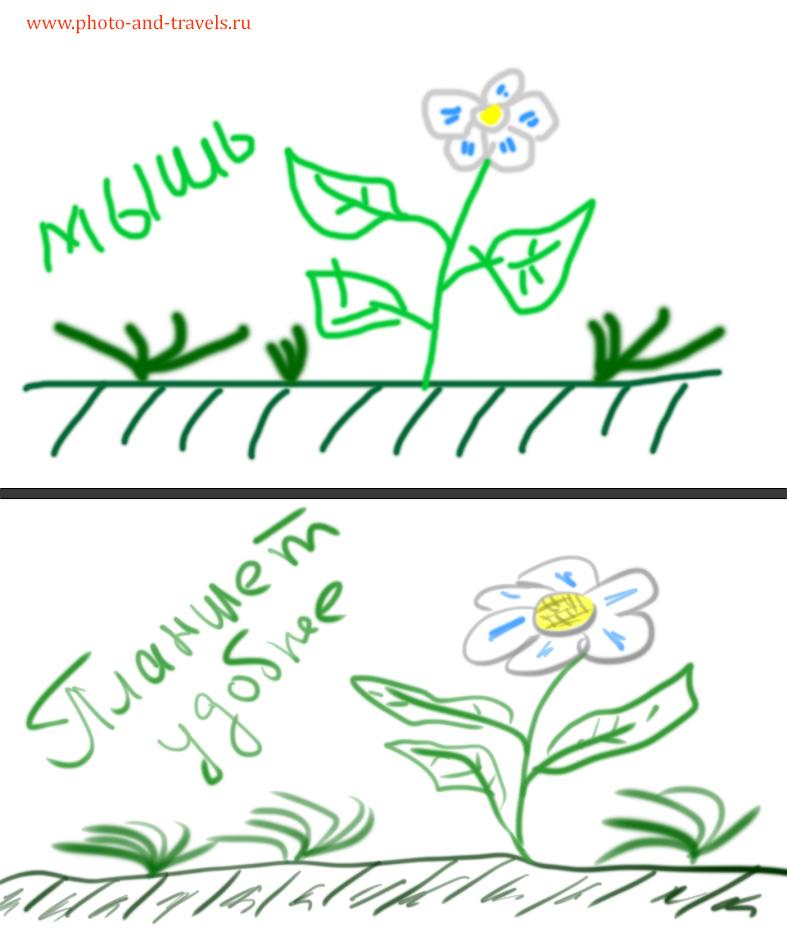 11. Пример использования мыши и планшета для рисования от руки. Какой инструмент удобнее и точнее?