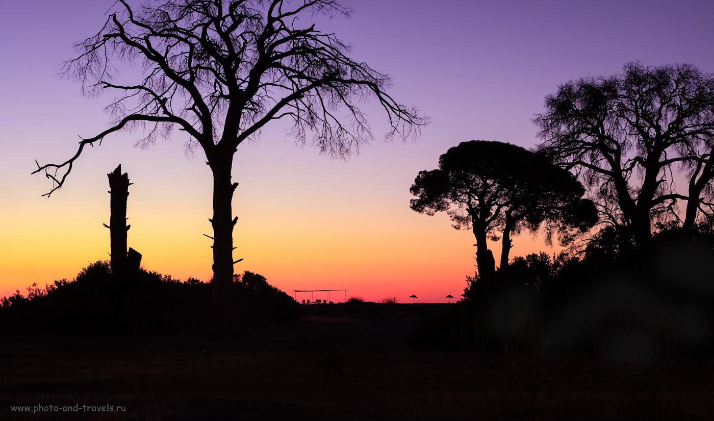 Фото 17. Деревья в северной части пляжа. 20 сек., f/7.1, ISO 200, +3EV, 38 мм.