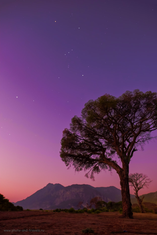 Фотография 32. Чем заняться в Чиралы? Снимать ночной пейзаж со звездами и сухими деревьями (здесь мы видим созвездие Орион). 8.0, 2.8, 800, 16.