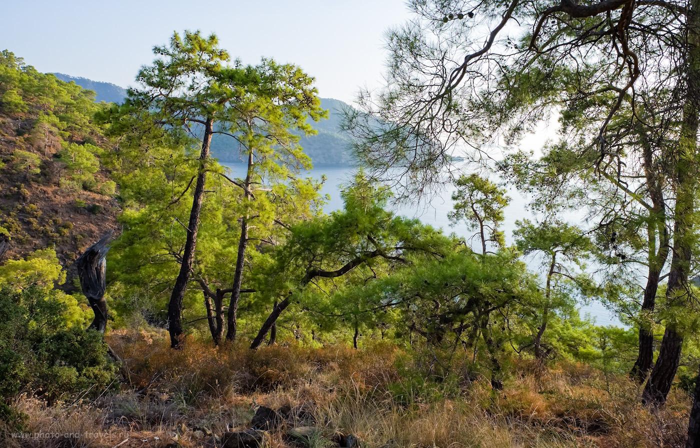 Фотография 39. Вид на бухту за скалой Карабурун в Чиралы. Вот где рай? 1/125, 8.0, 200, -0.67, 16.