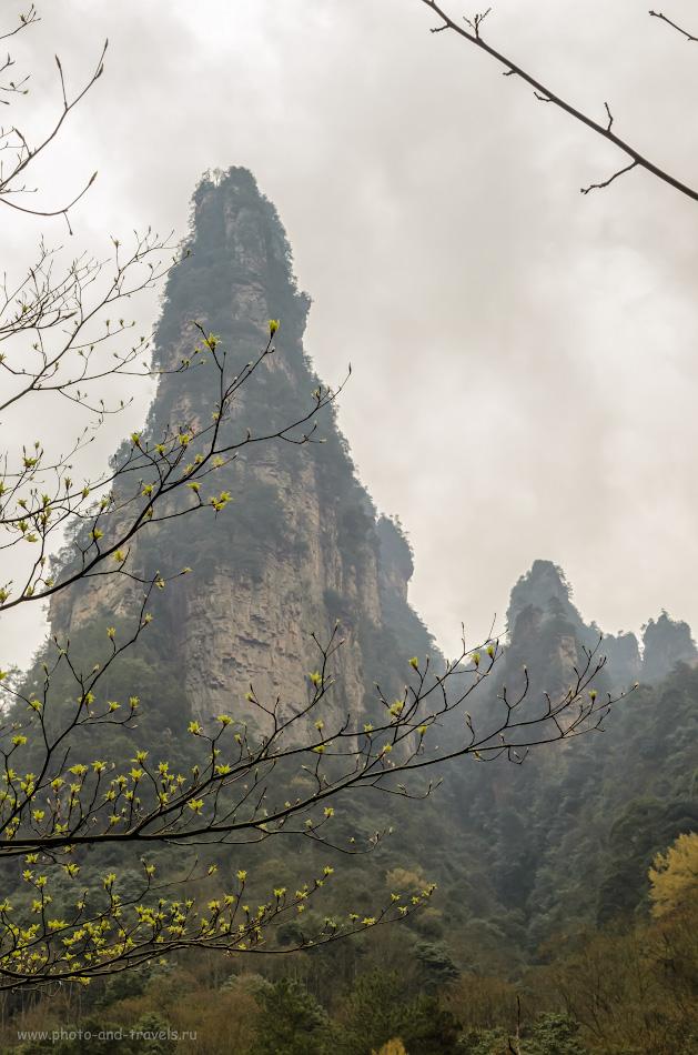 Фотография 7. Горы национального парка Чжанцзяцзе. Отзыв об отдыхе в Китае. Первая весна в 2014 году. 1/640, 11.0, 500, 35.