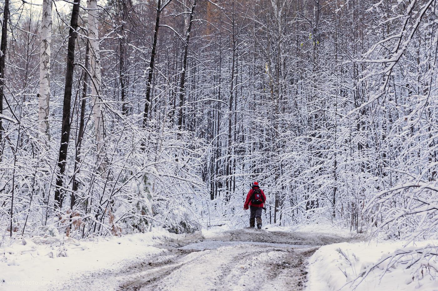 23. Чем заняться в выходные? Отправится в поход выходного дня в ближайший лес.