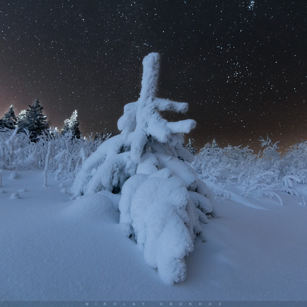 Фотография 9. Пример ночного зимнего пейзажа. Камера Nikon D7100 с объективом Tokina 11-16mm f/2.8 DX II. Небо: 12 mm, ISO 2500, f/2.8, 20 s, 1 кадр. Земля: 12 mm, ISO 400, f/2.8, 99 s, 1 кадр.