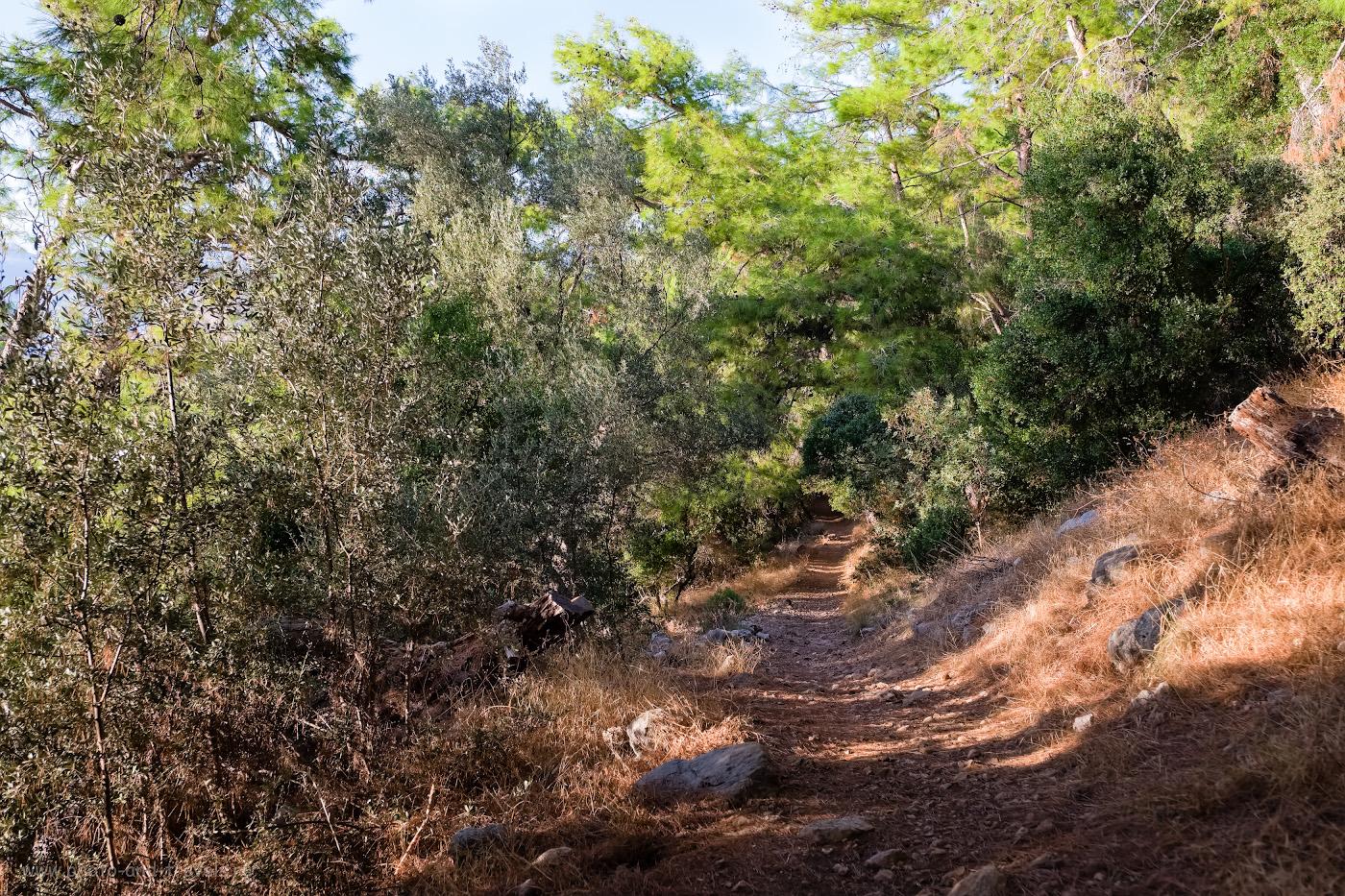 Фотография 7. Так выглядит дорожка на мысе. Отчеты туристов о походе по Ликийской тропе в Турции самостоятельно. 1/250, 3.6, 200, -0.33, 24.
