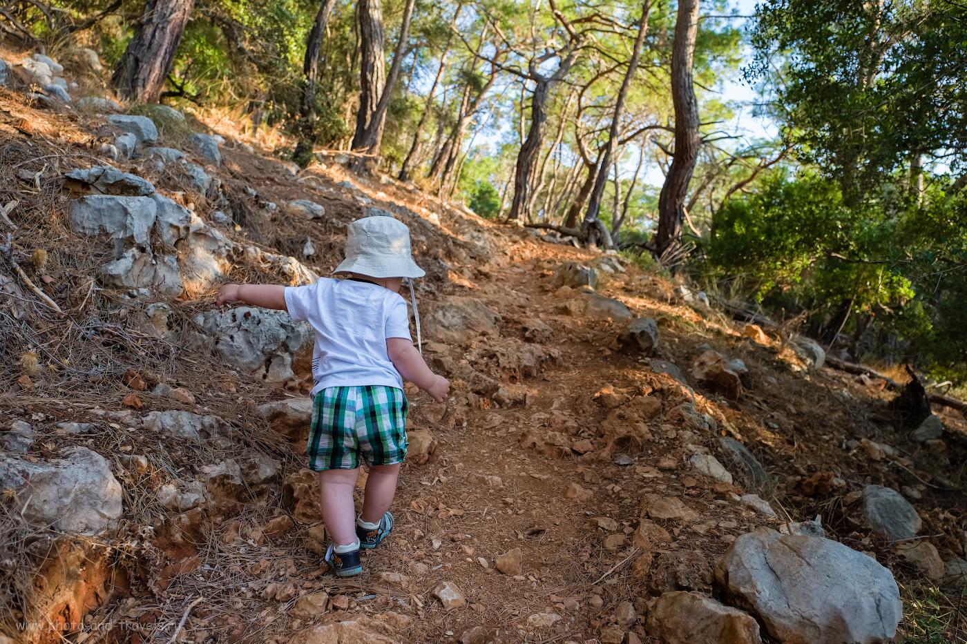 12. Можно ли с детьми идти в поход по Ликийской тропе? Кончено! Наш турист 1 года и 3,5 месяцев отроду шагал вполне уверенно. 1/200, 2.8, 200, -0.33, 16.