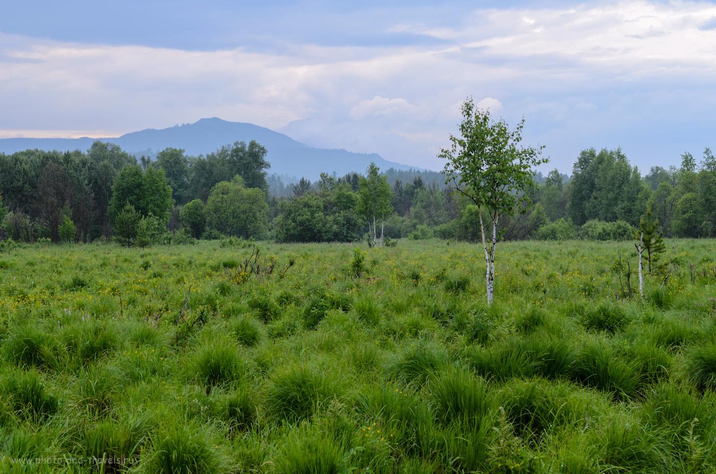 """Фото 12. Тот же ландшафт с видом на гору Ялангас из """"Малиновки"""", но снятый на объектив Nikon 17-55mm f/2.8 при ФР=55 миллиметров. Камера Nikon D5100. Настройки: 1/25, 9.0, 100, -1.0, 40."""
