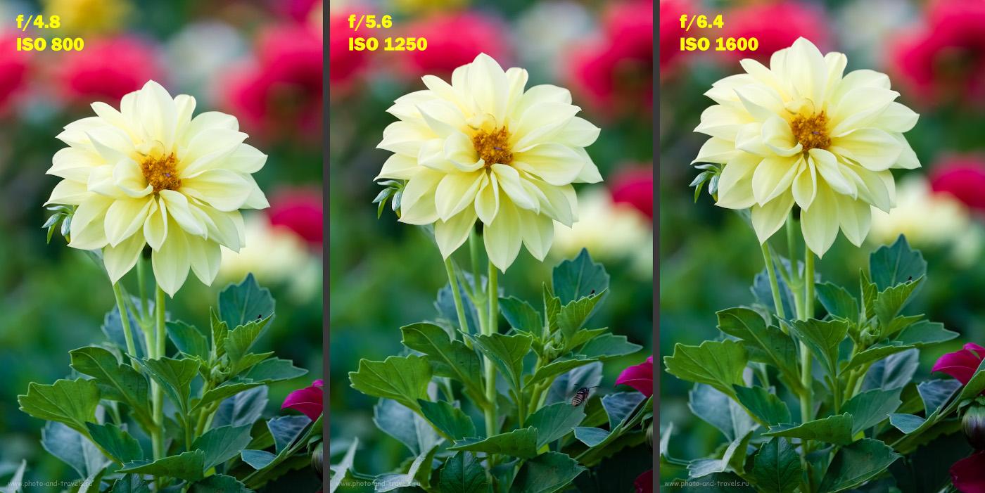 19. Как светосила объектива влияет на качество изображения. Сравниваем Fuji 50-200mm f/3.5-4.8 и Fuji 50-230mm f/4.5-6.7.