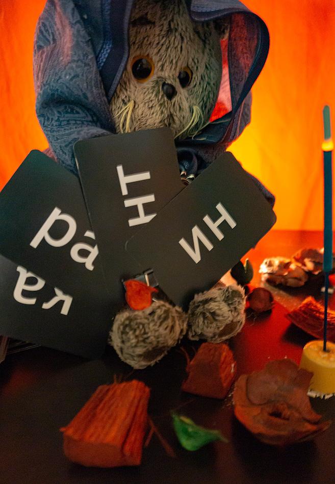 7. Уроки Магии от кота Басика. Отзывы владельцев Sony A6000 KIT 16-50mm f/3.5-5.6.