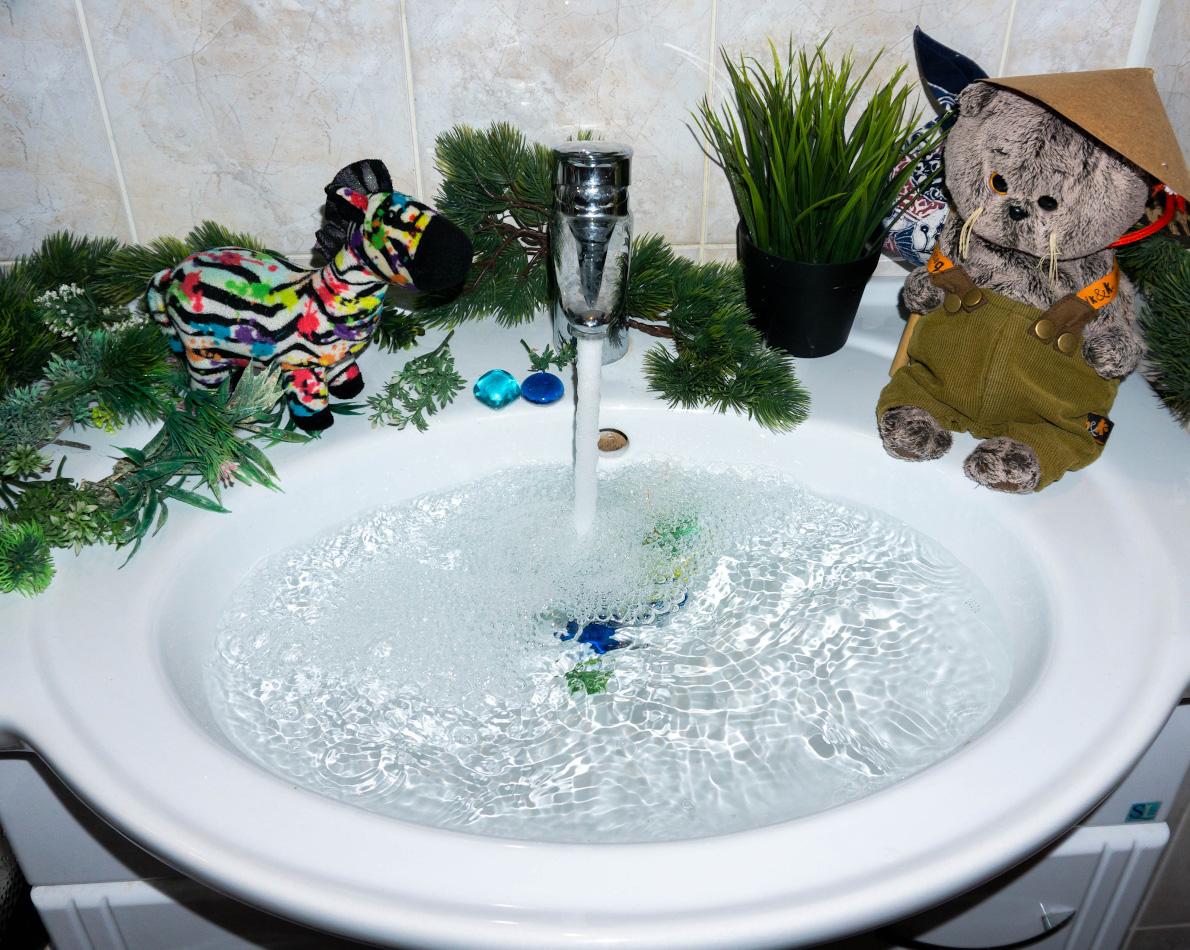 4. Кот-путешественник исследует водопад Шри-Ванна. В путешествие по дальним странам с Сони А6000. Настройки фото: 1/160, 4.0, 250, 16.