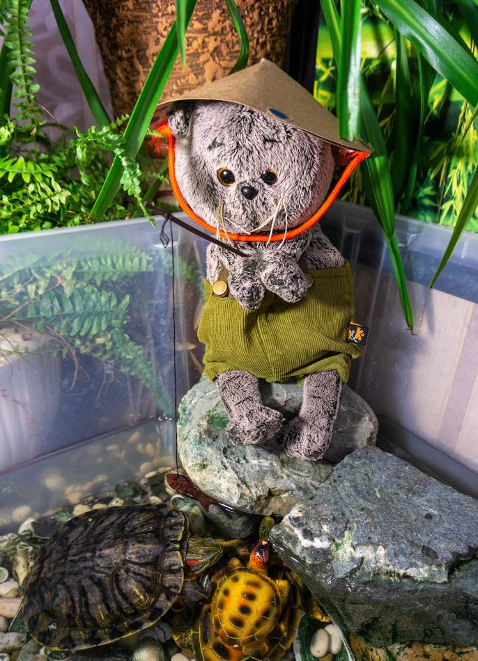 5. Кот Басик даже поучаствовал в рыбалке на черепах. 1/60, 3.5, 1000, 24.