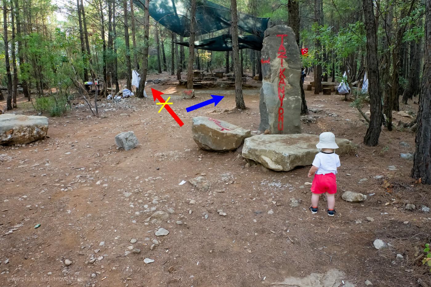 Фотография 8. Как найти каньон Тазы? Не всегда стоит верить указателям. 1/100, 10.0, 3200, -0.33, 16.