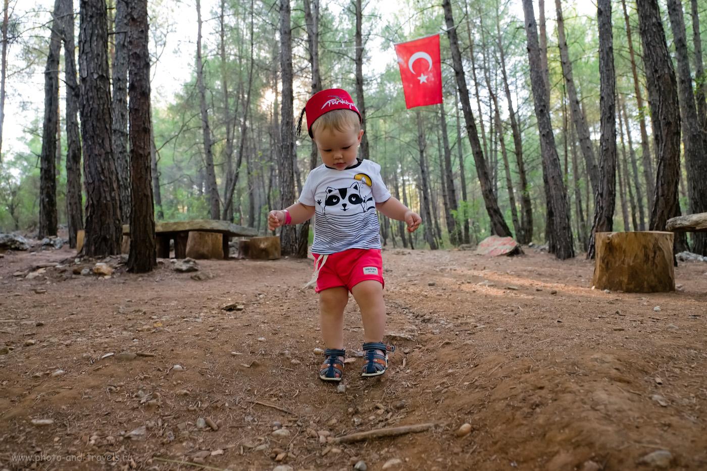 9. Если захотите посмотреть ущелье, идти нужно по тропинке, что за ребенком. Как найти смотровую площадку каньона Тазы (Tazı Kanyonu). 1/250, 2.8, 1000, 16.